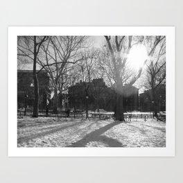 Light through the park Art Print