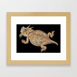 Horned Lizard Framed Art Print