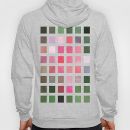 Pink Roses in Anzures 2 Abstract Rectangles 2 Hoody