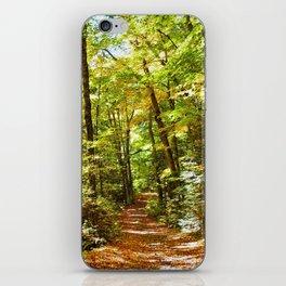 Sunlit Forest in Autumn iPhone Skin