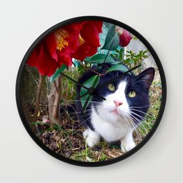 Orazio, the cat of camellias Wall Clock
