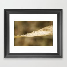 Blush Drops Framed Art Print