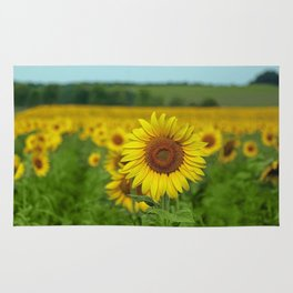 Yellow Sunflowers in Green Field Rug