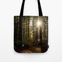 Redwood Forest Tote Bag