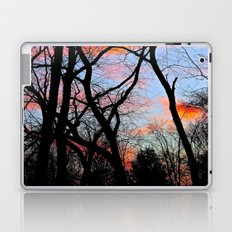 Sunset Through the Tangled Trees Laptop & iPad Skin