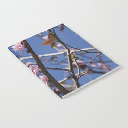 Branches of flowering Plum Notebook