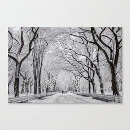 Poet's Walk, Winter Canvas Print