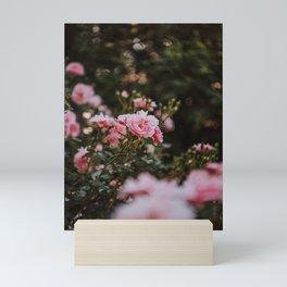 Flower Blooming Mini Art Print