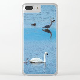 A Family of Swans Swim by a Great Blue Heron at Henrys Lake, Idaho Clear iPhone Case