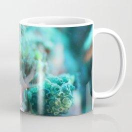 Nembrotha nudi munching on algea Coffee Mug