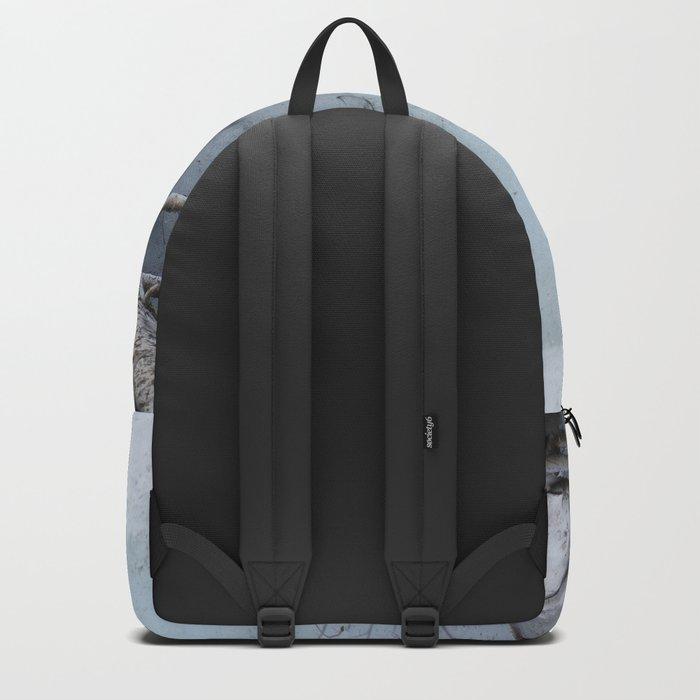 Frozen In Backpack