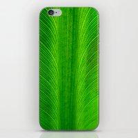 banana leaf iPhone & iPod Skins featuring Banana Leaf by moo2me