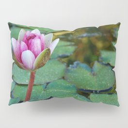 Water Lily 1 Pillow Sham