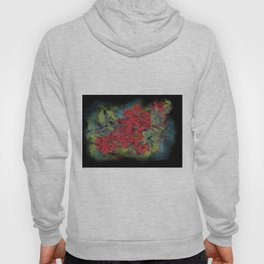 The flowering quince . Black background Hoody