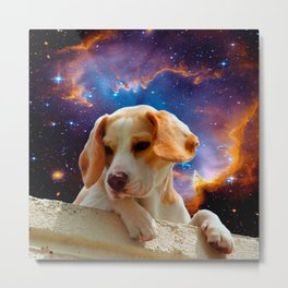 beagle puppy on the wall looking at the universe Metal Print