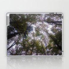 Autumn 03 Laptop & iPad Skin