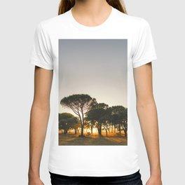 Golden Sunset T-shirt