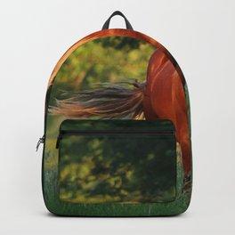 Vertical Shot Beautiful Brownish Horse Standing Backpack