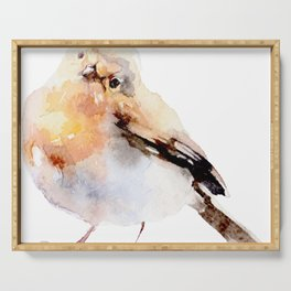 Watercolor Bird Painting Serving Tray