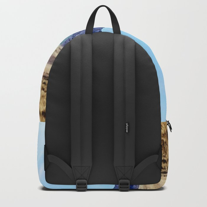 Nevada Plateau Backpack
