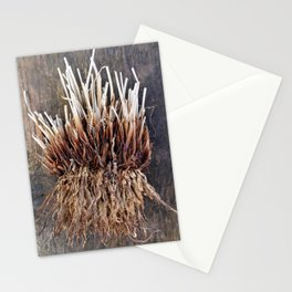 Above and Below Stationery Cards