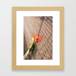 Vietnam Rose Framed Art Print