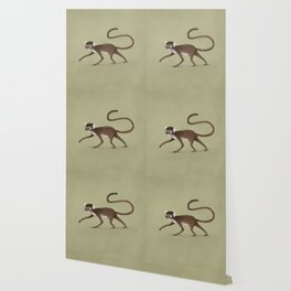 Squirrel Monkey Walking Wallpaper