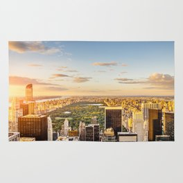 Central park at sunset - aerial view Rug