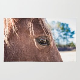 Sorel Horse Rug