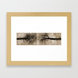Two Trees Framed Art Print