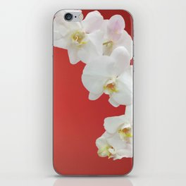Watermelon Orchid iPhone Skin