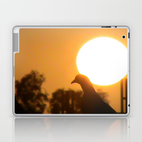 Pigeon Eclipse Laptop & iPad Skin