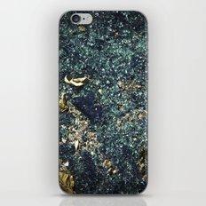 Crunchy iPhone & iPod Skin