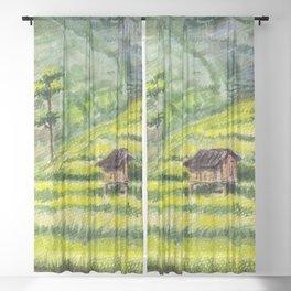 Rice Terrace Fields in Mu Cang Chai, Vietnam Sheer Curtain