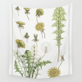 Pissenlit (dandelion) from La Plante et ses Applications ornementales (1896) illustrated by Maurice Wall Tapestry