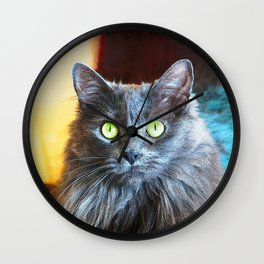 """You had me at 'meow'"" quote cute, fluffy grey cat close-up photo Wall Clock"