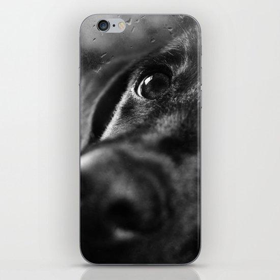 dog char iPhone Skin