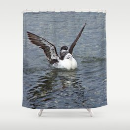 Razorbill spreading its wings Shower Curtain