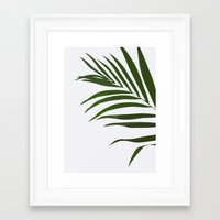 fern Framed Art Prints featuring Fern by Tamsin Lucie