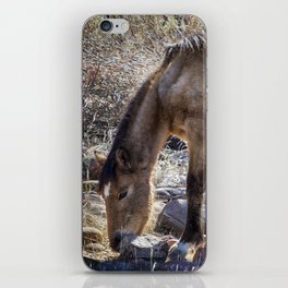 Grazing for Survival iPhone Skin