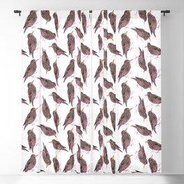 Common starling or European starling or Sturnus vulgaris watercolor birds painting Blackout Curtain