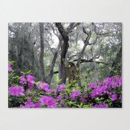 Azalea Hideaway Canvas Print