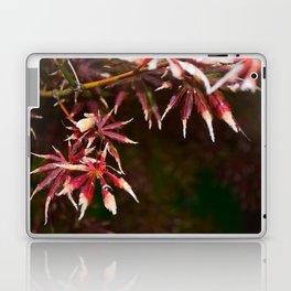 Deep Red Leaves of Japanese Maple Laptop & iPad Skin