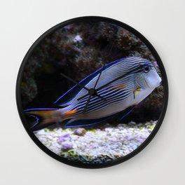 Sea World Colorful Fish Wall Clock