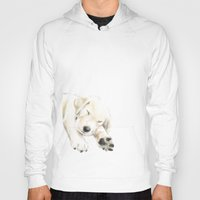golden retriever Hoodies featuring Golden Retriever Puppy Dog by Triple Studio