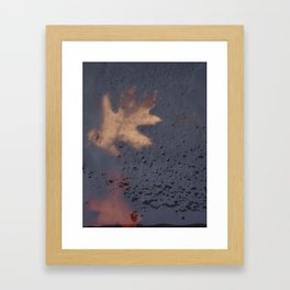 It Dared To Harbour Life Framed Art Print