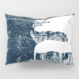 90º N Pillow Sham