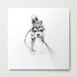 Perseverance :: A Siberian Husky Metal Print