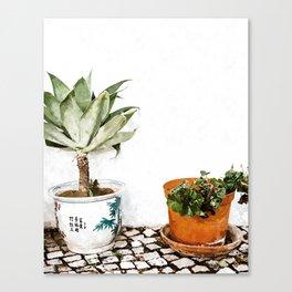 Boho Garden Canvas Print