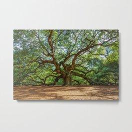 Angel Oak - Ancient Tree on Johns Island South Carolina Metal Print